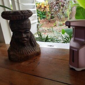 Statue-and-sanitozer